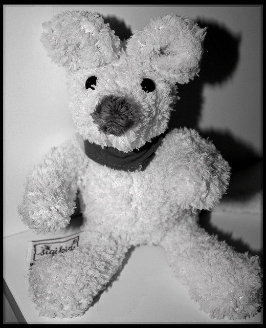 picture of stuffed bear