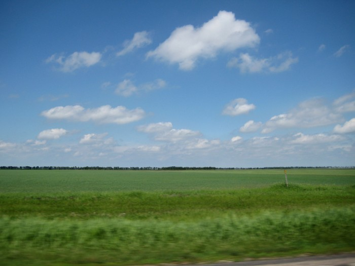 Landscape photo of green field and blue sky