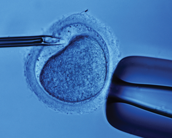 assisted reproductive technology Assisted reproductive technology (art) is the application of laboratory or clinical technology to eggs, sperm and/or embryos for the purposes of reproduction.
